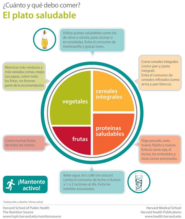 Nutrición | Guía Diabetes tipo 1