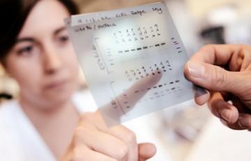 Investigadores comparando datos de un estudio